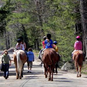 trail_rides